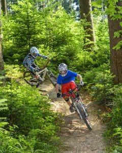 Mountainbike Fahrtechnik TrailRideDay